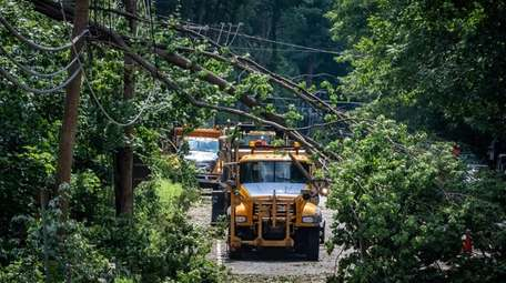Crews on the scene of downed trees on