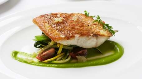 Roasted red snapper with vegetable fricassee at Stone