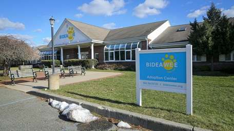 The Bideawee Adoption Center, in Westhampton. Bideawee rescues,