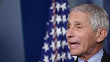 Anthony Fauci is poised to become Biden's chief