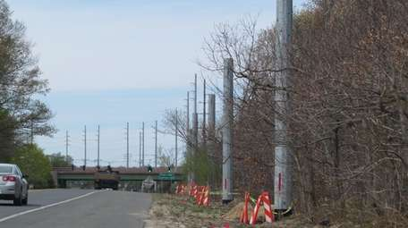 PSEG Long Island was forced to remove 31