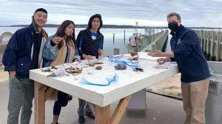 Peeko Oyster Farm founder Peter Stein, right, holds