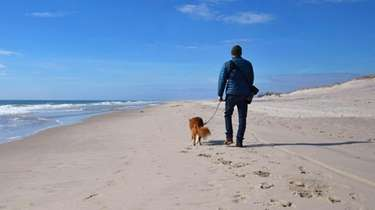 The Fire Island National Seashore invites you and