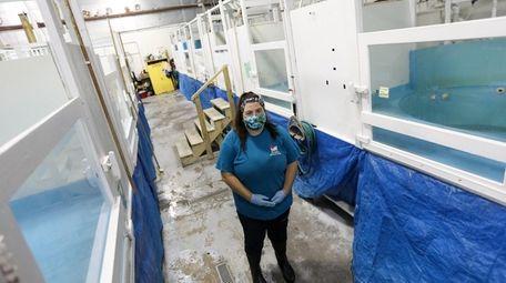 Maxine Montello, the rescue program director at the