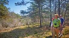 Here are hiking paths on Long Island to