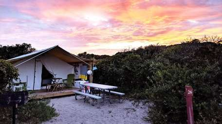 The campground at Watch Hill on Fire Island
