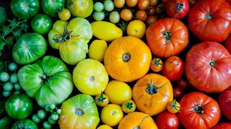 LOCAL EATS — TOMATOES Learn about all kinds