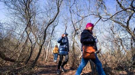 Hikers explore Inlet Pond County Park in Greenport.