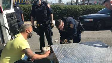 Nassau County police officers work to free Bentley,