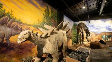 The dinosaur exhibit at the Center for Science