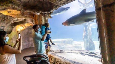 Visitors at the Long Island Aquarium in Riverhead