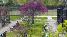 A sunny day in Grant Park, Hewlett