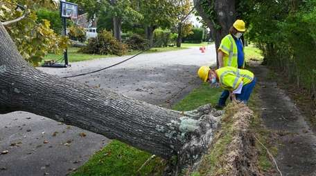 PSEG workers survey damage after Tropical Storm Isaias
