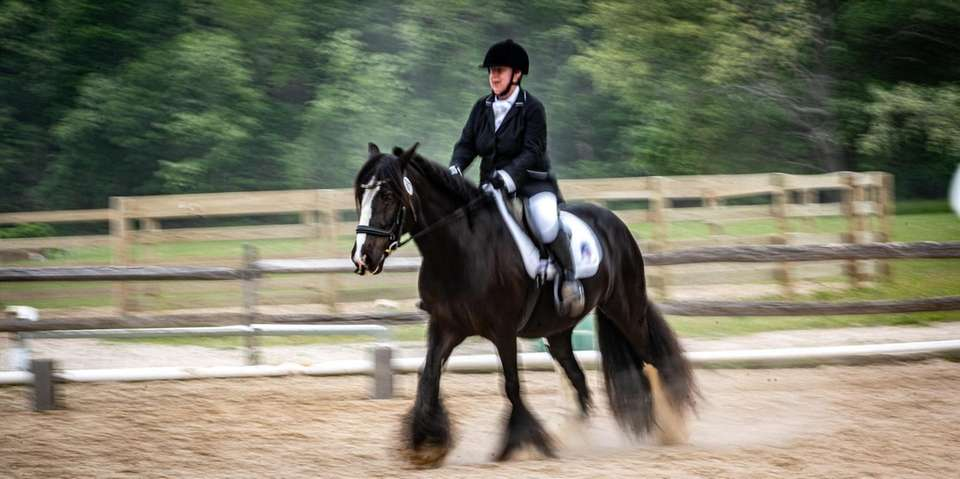 Suzanne Ament, a blind dressage competitor, during her