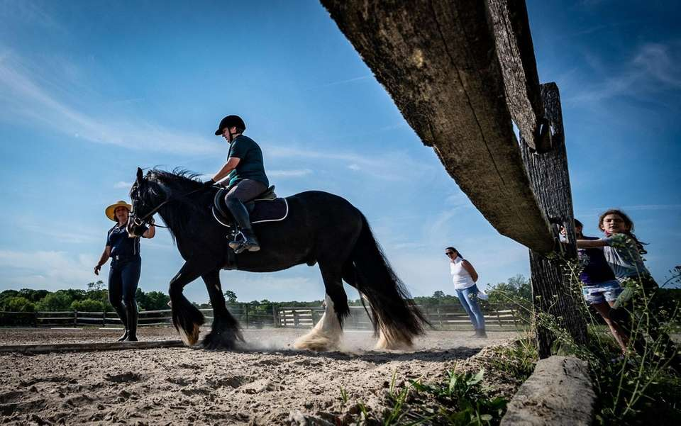 Suzanne Ament on her horse getting instructions from