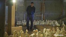 Despite setbacks from the pandemic,Crescent Duck Farmpresident Doug
