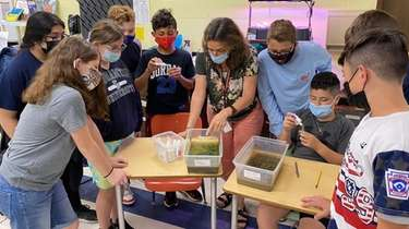 Sixth graders at Accompsett Middle School watch teacher