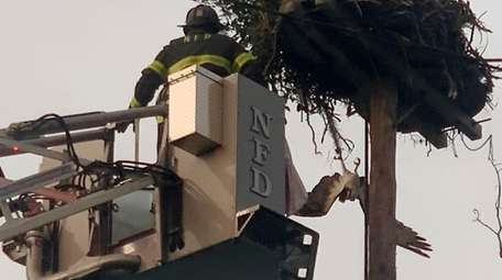 A Northport firefighter on a ladder approaches an
