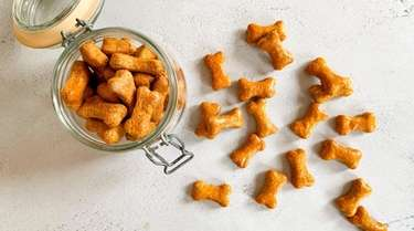 Dog treats made from wholesome ingredients including pumpkin