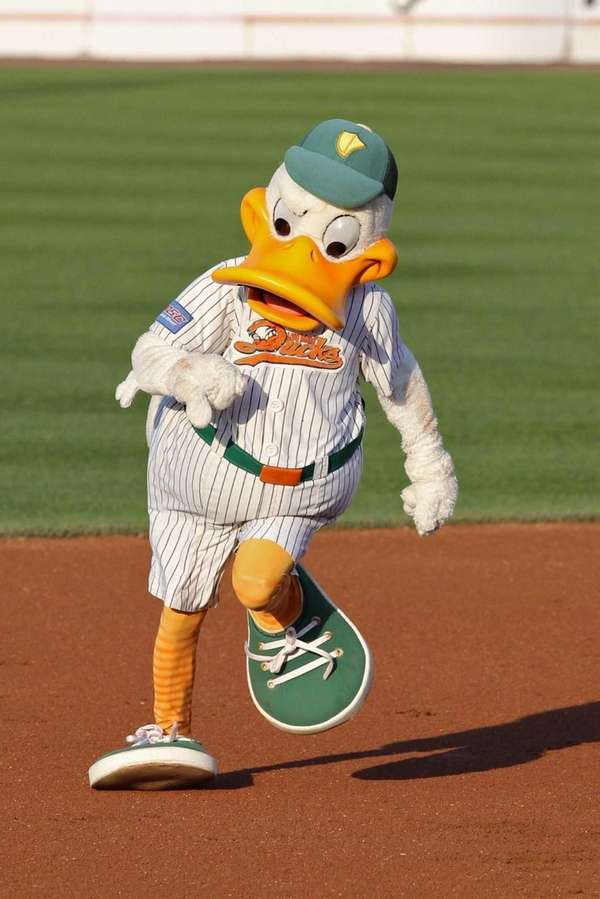 Long Island Ducks take on the Camden Riversharks