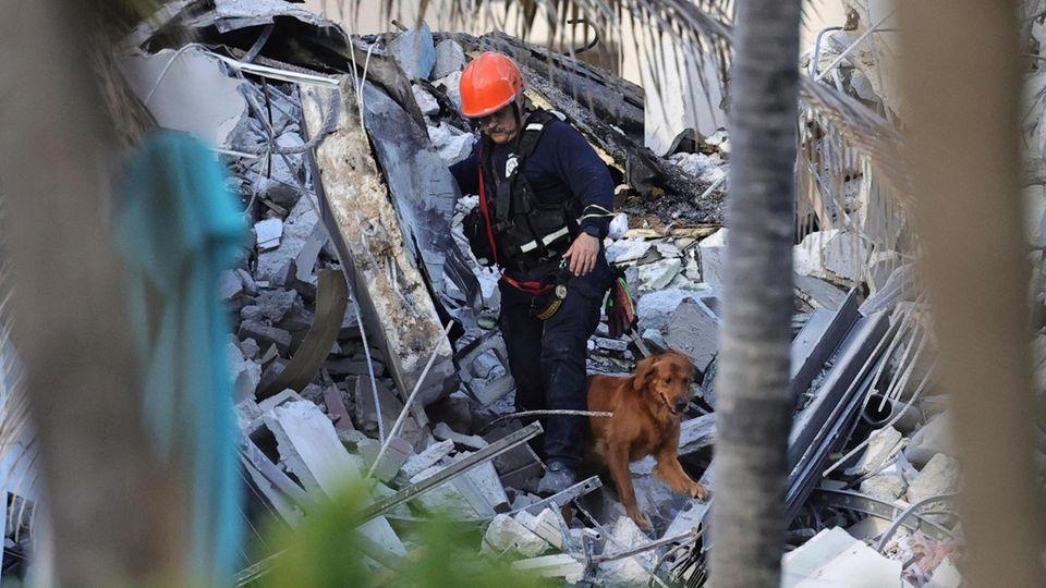 Fire rescue personnel conduct a search and rescue
