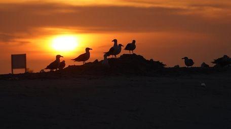 Sunrise at Jones Beach State Park Monday, June