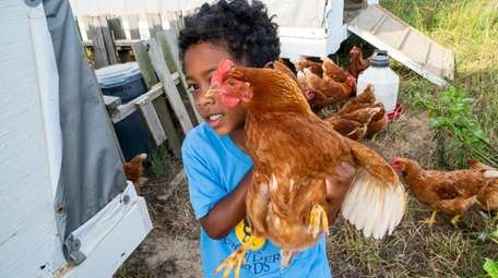 JB Browder, 5, holds one of his chickens