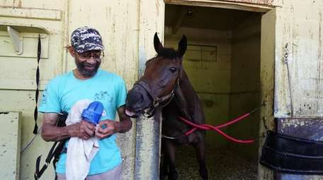 Thoroughbred house trainer Edmund Pringle with horse Queen