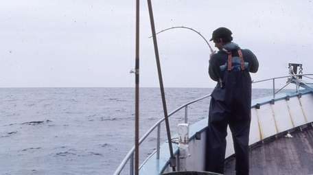 Capt. Mike Stedman fishes off the Wind Blown.