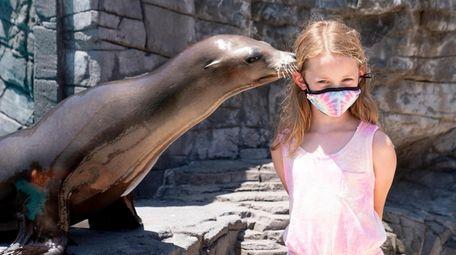 Nila the sea lion gives a kiss to