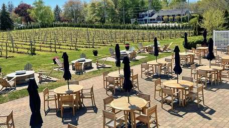 The outside patio and vineyard rows at Peconic