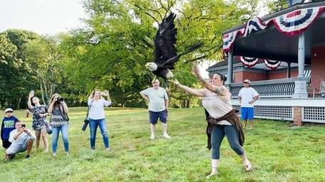 A rehabilitated bald eagle was released Monday at