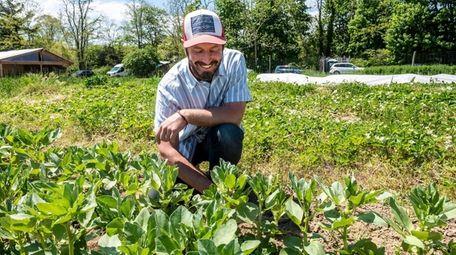 Head farmer Sean Pilger at H.O.G. Farm in
