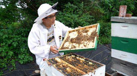 Taste honey at a festival on the East