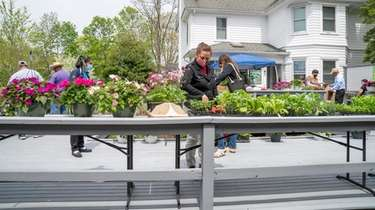 The Long Island Farmworker Cooperative's flower market in