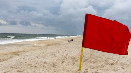Swimming was restricted at area beaches after shark