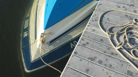 The boat's owner was issued a summons for