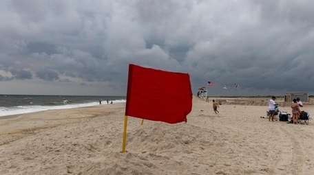 Red flags were up after a possible shark