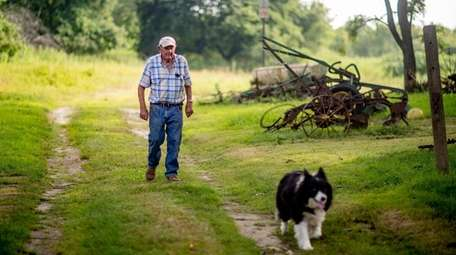 Ron Bush walks with Cowgirl at his farm