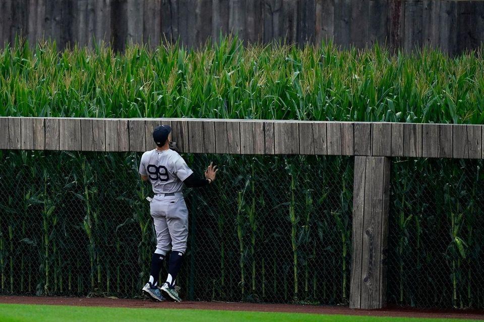 New York Yankees right fielder Aaron Judge watches
