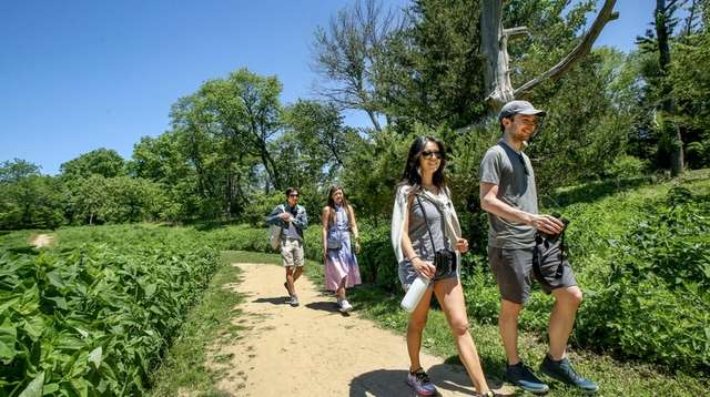 Hikers walk along a trail through one of