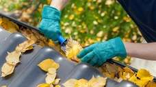Clearing leaves from the gutters can help prevent