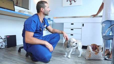 Dr. Tomas Infernuso says his Animal Surgical Center's