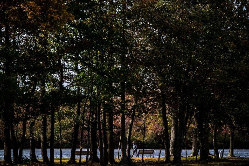 A man takes a stroll at Belmont Lake