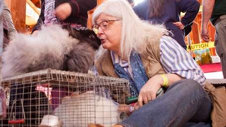 Adele Tomassi interacts with an angora at the