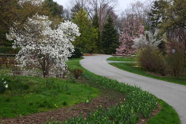 These are bloom times at Clark Botanic Garden,