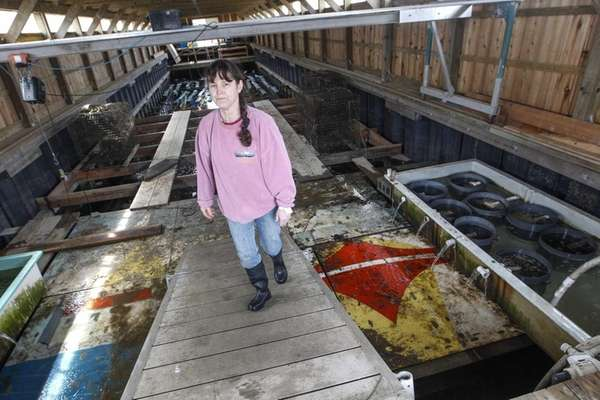 Karen Rivara, an oyster grower farmer, in the