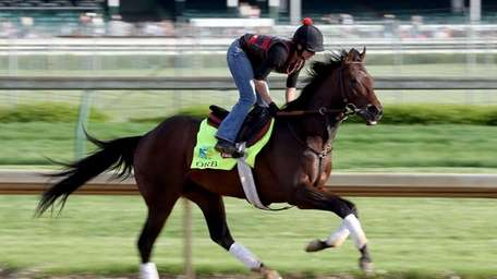 Orb runs on the track during the morning