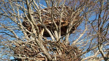 Roderick Romero designed this Southampton treehouse called the