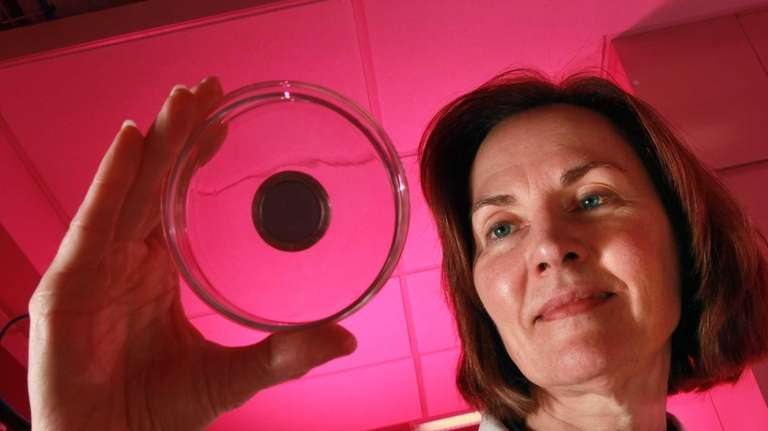 Esther Takeuchi heads the advanced energy research at